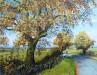 Autumn, Unrestricted - Sally Pudney