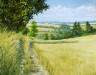 Essex Field Path II - Sally Pudney