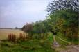Peddars Way I: near North Pickenham - Sally Pudney