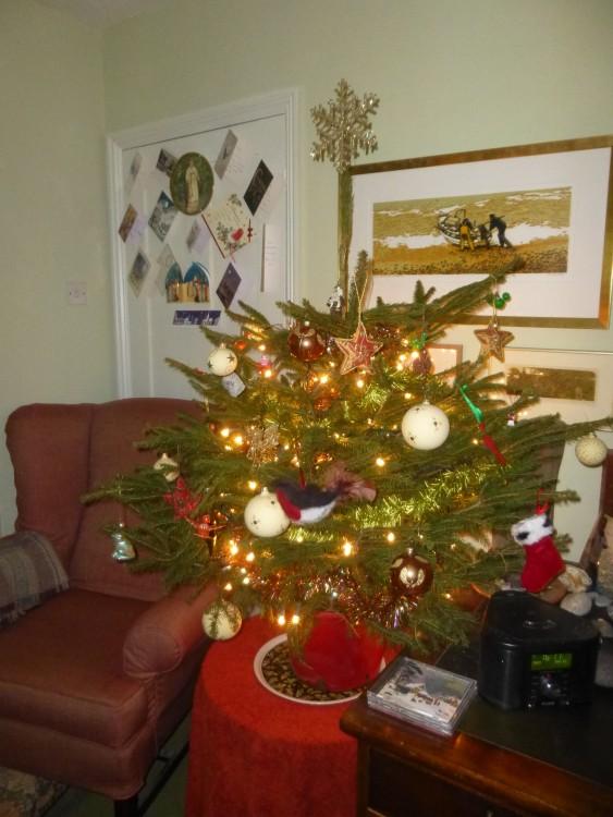 Christmas Tree '15 2