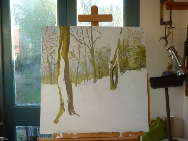 Essex Wood January progress 002