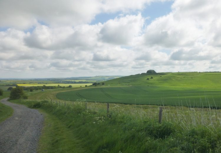 The steep slopes and deep ditches of Barbury Castle with sight!