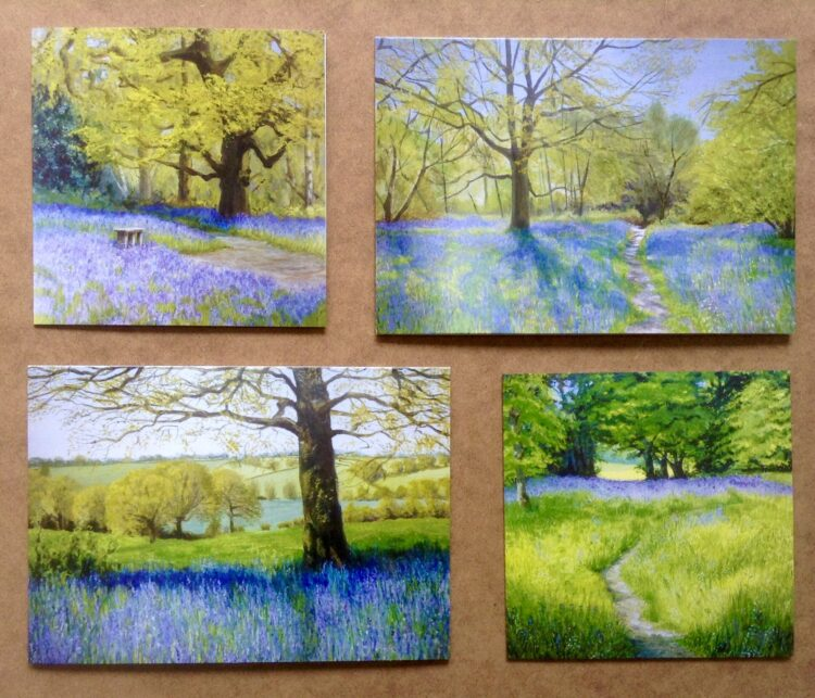Bluebell Woods Greetings Card Pack