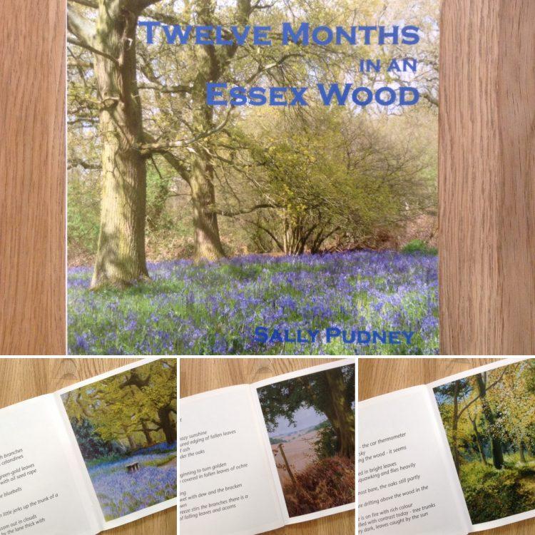 'Twelve Months in an Essex Wood' Book