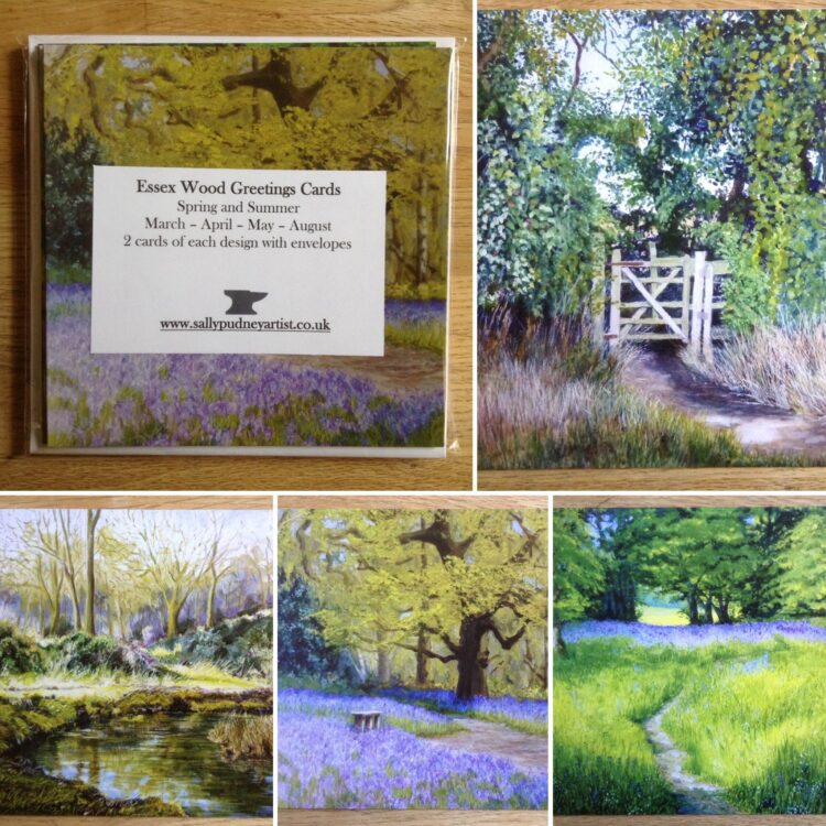 Essex Wood Spring and Summer Greetings Card Pack