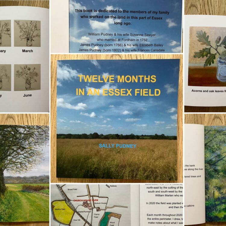 Twelve Months in an Essex Field Book