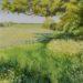 Essex Field: Before the Rye Harvest - Sally Pudney