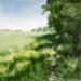 Essex Field: May - Sally Pudney