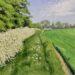 Field Path at Little Bentley - Sally Pudney
