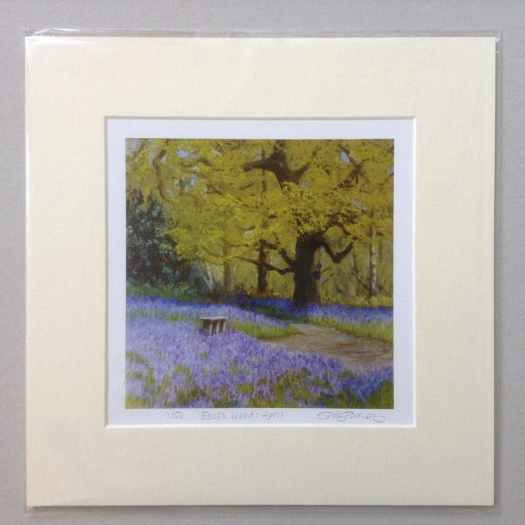 'Essex Wood: April', limited edition mini-print