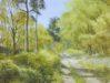 Spring Unlocked - Sally Pudney
