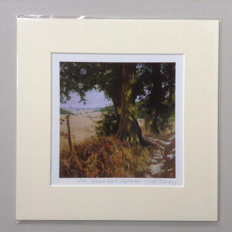 'Essex Wood: September' limited edition mini-print